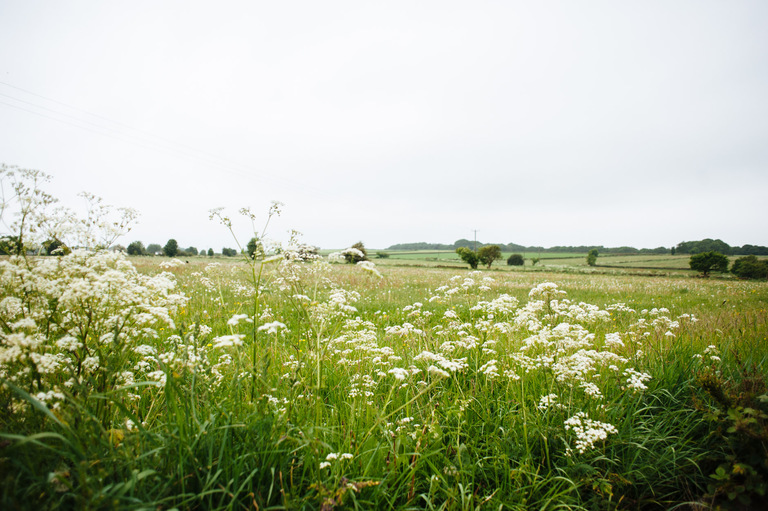 fields outside of the grooms home in Yorkshire