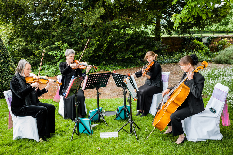 wedding string quartet entertainment music