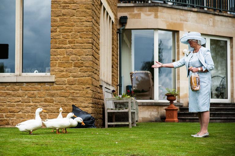 mother of the bride feeding ducks